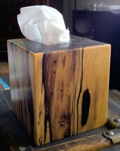brydon kleenex box 6